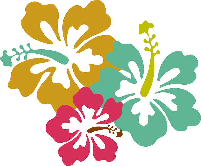 ハワイ・ハイビスカス